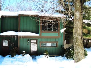 Luxury Hidden Valley Retreat w/ Lake & Slope Views - Hidden Valley vacation rentals