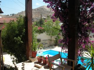 "5 Bedroom villa ""The Nest""  with pool - Larnaca District vacation rentals"