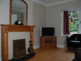 Modern Townhouse - County Dublin vacation rentals