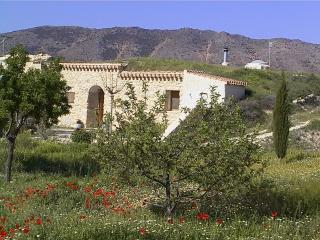 Wonderful Orce Cave house rental with Microwave - Orce vacation rentals