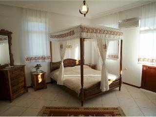 Spacious 5 bedroom Gokova Villa with Internet Access - Gokova vacation rentals