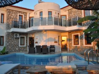 Nice Villa with Internet Access and A/C - Sogut vacation rentals