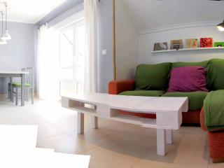 Blue Penthouse - Lugo vacation rentals
