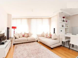Luxury Residence Flat free fastwifi/ lift / Taksim - Istanbul vacation rentals