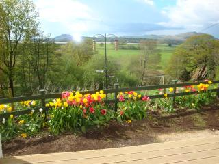 Secluded Ty-Gwyn Welsh holiday cottage in 1/3 acre - Talsarnau vacation rentals