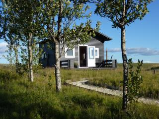 Cozy Hella Cottage rental with Deck - Hella vacation rentals
