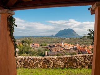 Cozy 2 bedroom Capo Coda Cavallo Condo with A/C - Capo Coda Cavallo vacation rentals