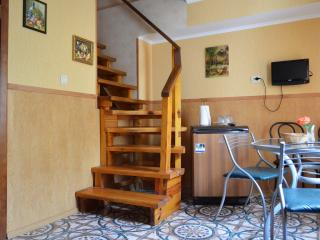 Krivoy Rog cottage - Kryvyy Rih vacation rentals