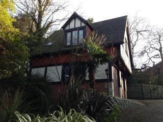 1 bedroom apartment - Brighton vacation rentals