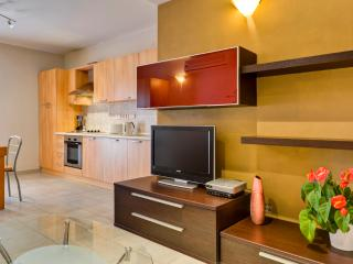 Central High-Finished Sliema - Sliema vacation rentals