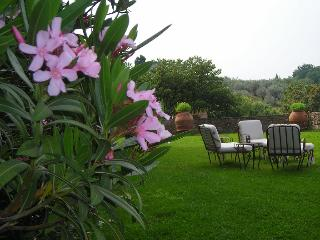 Romantic Condo with Internet Access and Shared Outdoor Pool - Bargino vacation rentals