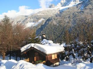 Sunny 1 bedroom Chamonix Chalet with Deck - Chamonix vacation rentals