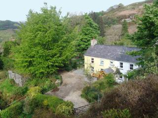 Wonderful 2 bedroom Cottage in Pont-Rhyd-y-Groes - Pont-Rhyd-y-Groes vacation rentals