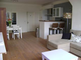 1 bedroom Condo with Internet Access in Alkmaar - Alkmaar vacation rentals