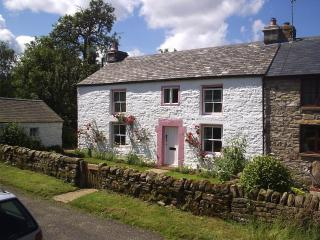 Lovely 3 bedroom Haltwhistle Cottage with Internet Access - Haltwhistle vacation rentals