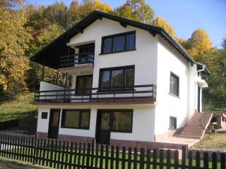 Beautiful 3 bedroom Villa in Ribaritsa - Ribaritsa vacation rentals