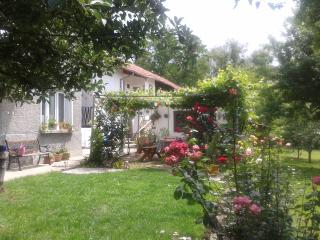 Country village home near Sevlievo Gabrovo - Sevlievo vacation rentals