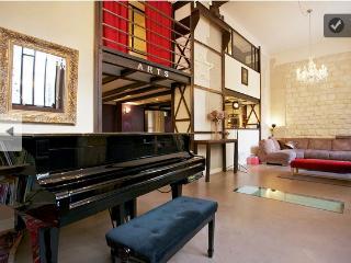 Amazing Loft in the Marais - Paris vacation rentals
