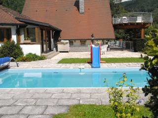 Gite with a view on swim pool - Colmar vacation rentals