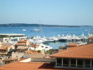 Sea view Cannes holiday apartment with balcony. - Cannes vacation rentals