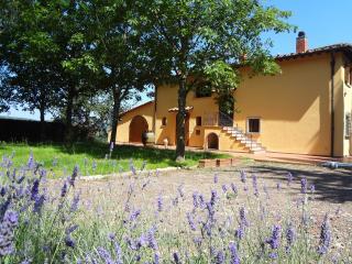 Grace's Tuscan Villa: elegant farmhouse with private garden, terrace and jacuzzi - Vaglia vacation rentals