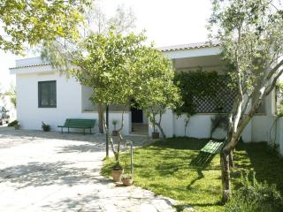 3 bedroom Bed and Breakfast with A/C in Soleto - Soleto vacation rentals