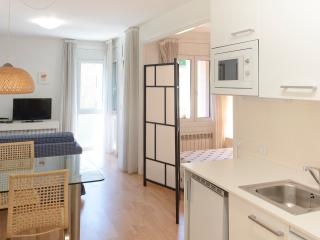 Cozy Studio in La Massana with Internet Access, sleeps 3 - La Massana vacation rentals