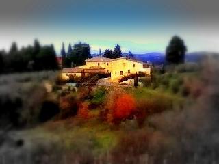 Close to Firenze charming farm - Tavarnelle Val di Pesa vacation rentals