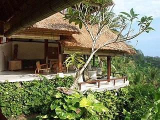 VILLA DHYAN - Artist Home with Amazing River View - Ubud vacation rentals