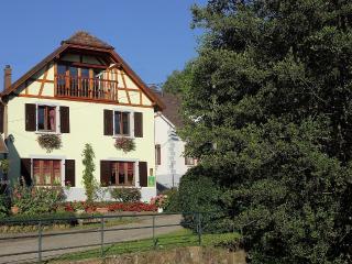 gîte les myrtilles centre Alsace, tout confort - Maisonsgoutte vacation rentals