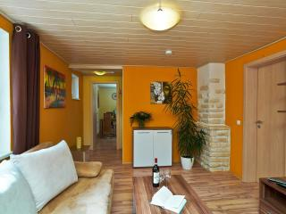 1 bedroom Apartment with Internet Access in Schwangau - Schwangau vacation rentals