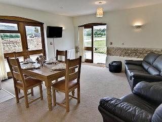 The Byre,  Pool, Gym, Sauna, Super Fast WiFi, Ground Floor & Family Friendly - Woolland vacation rentals