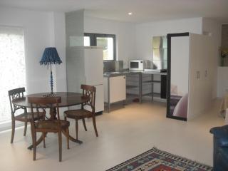 sunny studio in Parede Cascais - Parede vacation rentals