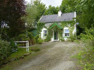 2 bedroom Cottage with Internet Access in Kenmare - Kenmare vacation rentals