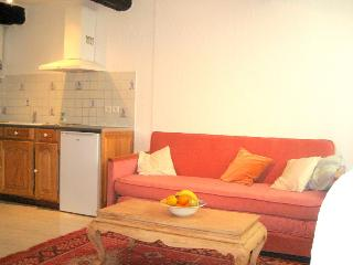 1 bedroom Condo with Washing Machine in Saint-Paul-en-Foret - Saint-Paul-en-Foret vacation rentals