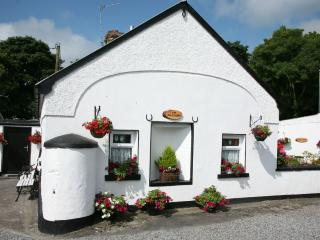Comfortable Cottage with Outdoor Dining Area and Boat Available - Portumna vacation rentals