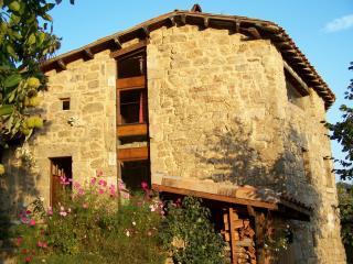 Gîte Ardèche Les Châtaigniers - Gluiras vacation rentals