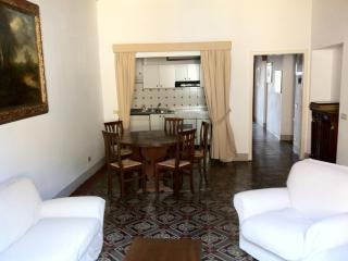 elegant flat in town centre - Pietrasanta vacation rentals