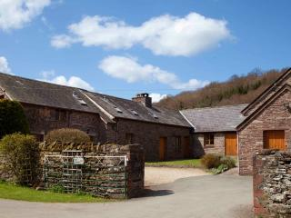 Cilwych Cottages/Brecon/12max superb rural venue - Brecon vacation rentals