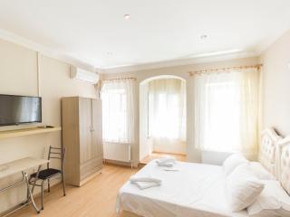Studio Flat Near Istiklal Avenue Taksim - 122 - Istanbul vacation rentals