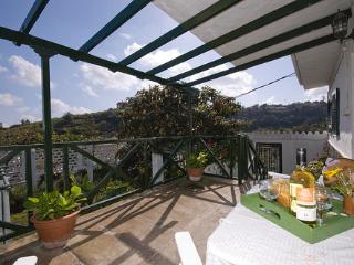3 bedroom House with Television in Santa Brigida - Santa Brigida vacation rentals