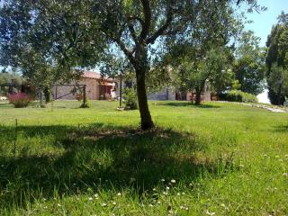 Bright 4 bedroom Farmhouse Barn in Tarquinia with Garden - Tarquinia vacation rentals