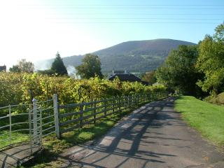 Romantic 1 bedroom Cottage in Abergavenny - Abergavenny vacation rentals