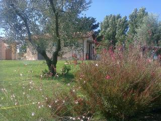 Perfect Farmhouse Barn with Private Fishing and Hair Dryer in Tarquinia - Tarquinia vacation rentals
