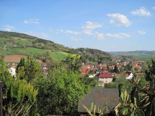 Nice Villa with Internet Access and Dishwasher - Morschen vacation rentals