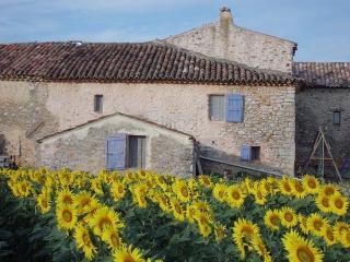 La Vudèle - gite rural en campagne à Quinson - Montagnac-Montpezat vacation rentals