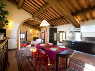 Wonderful 1 bedroom Farmhouse Barn in Castellina In Chianti - Castellina In Chianti vacation rentals