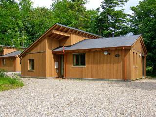Cozy 3 bedroom Vacation Rental in County Limerick - County Limerick vacation rentals