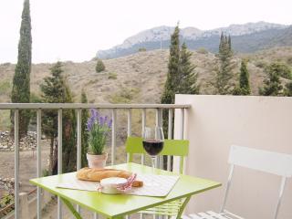 Vine and Mountain Apartment - Saint-Paul-de-Fenouillet vacation rentals