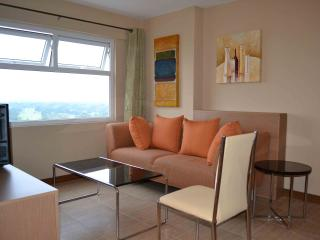 SPACIOUS centrally located 2BR - Mandaluyong vacation rentals